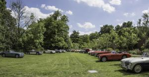 2017 Concours The Field